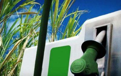 Biocombustibles en el Perú: Cambio en la matriz Energética