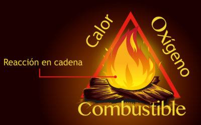 Optimización de la Combustión como Mecanismo de Reducción del Costo Operacional y Sostenibilidad