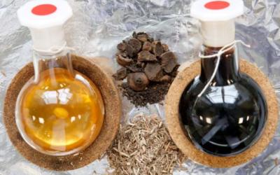 Diseño de procesos de obtención de aceites esenciales
